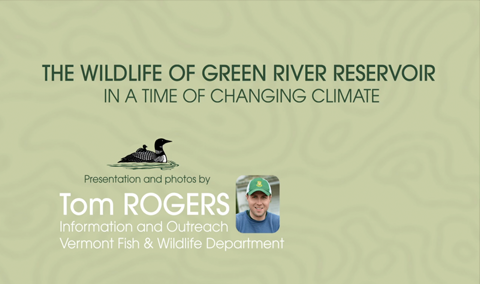 The Wildlife of Green River Reservoir in a Time of Changing Climate