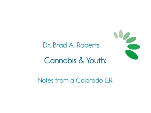 Healthy Lamoille Valley Presents Cannabis & Youth: Notes from a Colorado E.R
