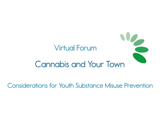 Healthy Lamoille Valley, Cannabis and Your Town