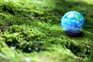 11-amazing-eco-friendly-beauty-products-1-9474-1366658825-15_big[1]