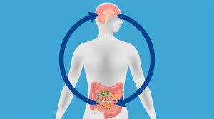 Probing the Brain Gut Microbiome Connection at UCLA's Division of Digestive Diseases