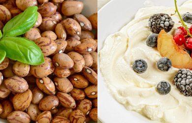 High Fiber vs Fermented Foods – Who Wins?