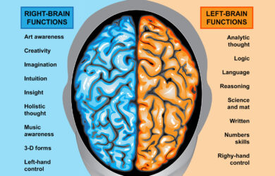 Brain Balancing Act