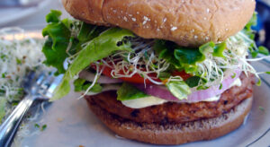 What is All the Craze about Plant-Based Meat Substitutes?