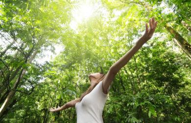 Optimism and Cardiovascular Health