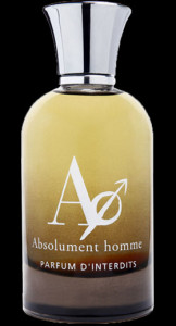 holiday gift guide absolument