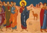 Бюлетень – 12 вересня, 2021 року, 12 Неділя після Зіслання Св. Духа.