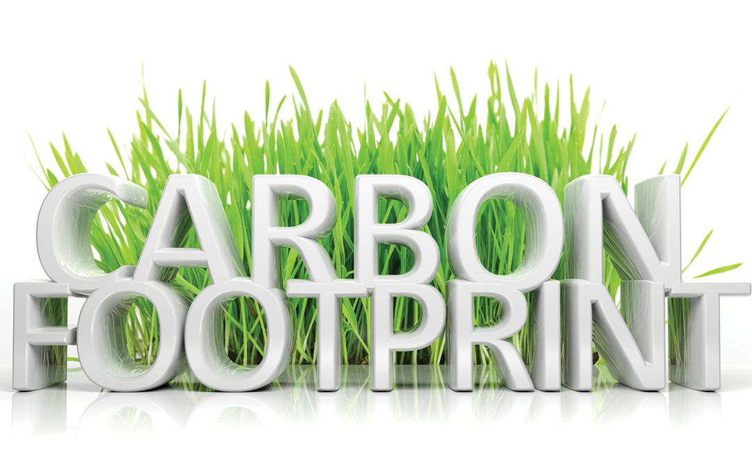 Carbon Footprint: Energy and Water