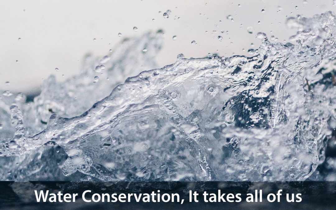 Water-Conservation Tips for Homeowners
