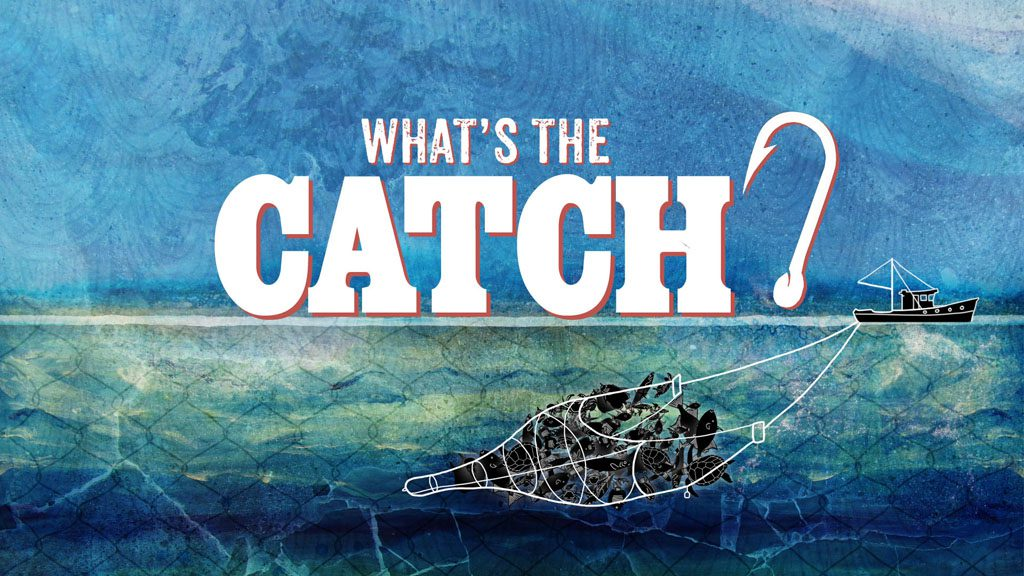 ON AIR: What's the Catch? Thursdays 8.30pm on SBS