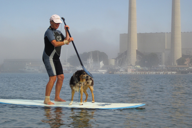 Stand up paddling boarding