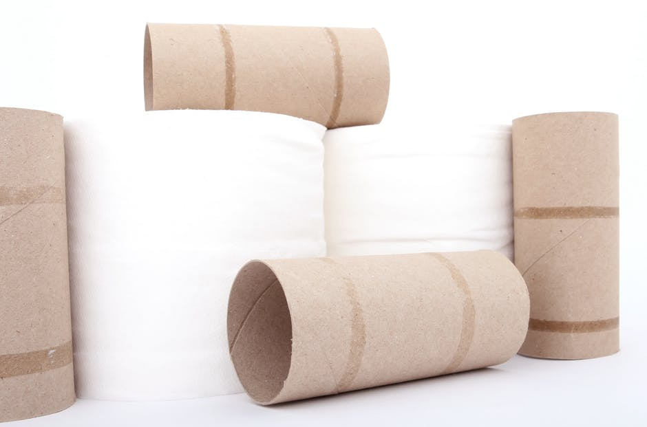 Rolls of toilet paper and empty cardboard tubes