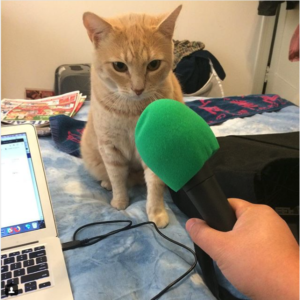 Sherbie and his Pawcast