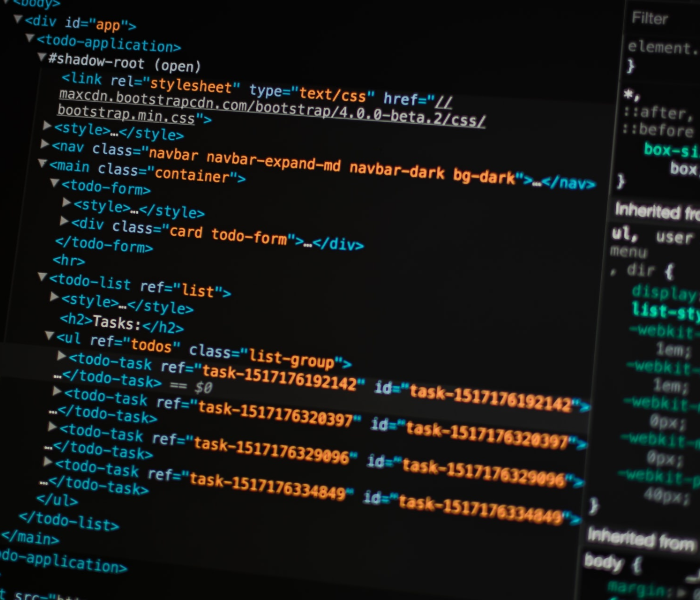 Security Assessments and Penetration Testing