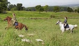 amanda-brooks-farm-15