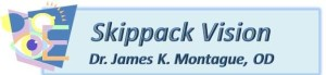 Skippack Vision logo pastel