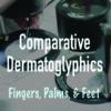 Comparative Dermatoglyphics: Fingers, Palms, and Feet (07/06/21)