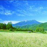 nagano prefecture field