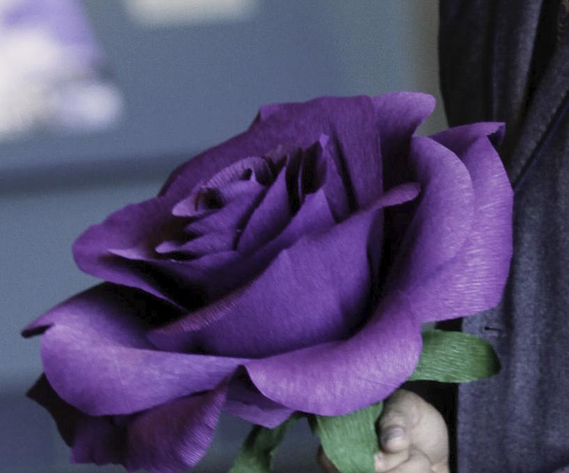 giant-rose