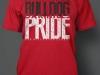 OHHS pride spirit shirt