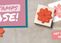 Two Free Stamps in Stampin' Up!'s Starter Kit |Ann's PaperWorks| Ann Lewis| Stampin' Up! (Aus) online store 24/7