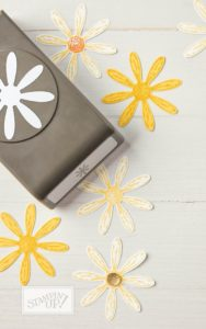 Stampin' Up! Daisy Punch, Stampin' Up! 2017-18 Catalogue Ann's PaperWorks| Ann Lewis| Stampin' Up! (Aus) online store 24/7