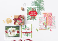christmas card class, stamp-a-stack, handmade christmas cards, christmas cards, sunshine coast, ann lewis, annspaperworks, stampin up, Stampin' Up!, online store, online shop