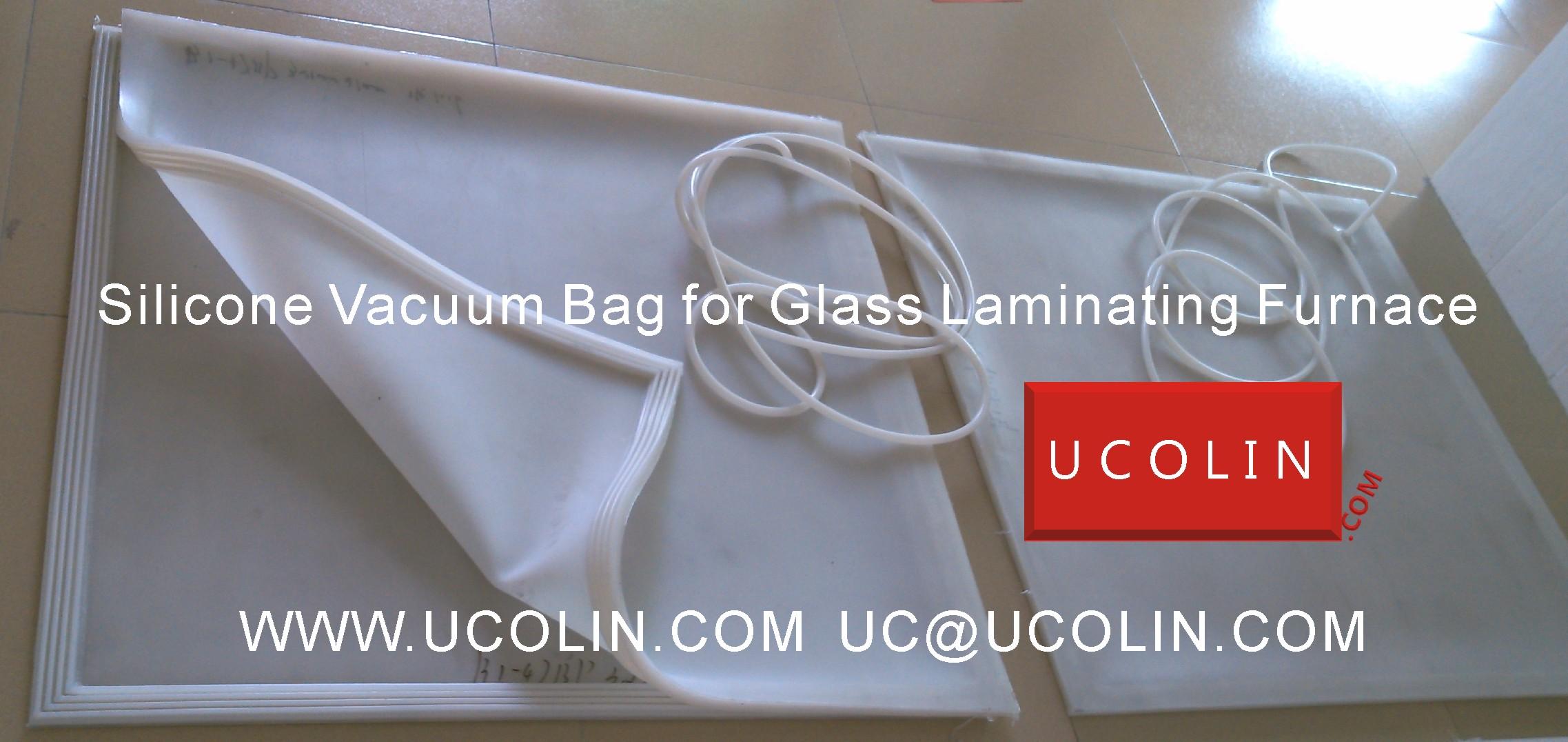 01 Silicone vacuum bag sample