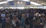 Thirsty Cowboy Saloon - Country Jam 2016