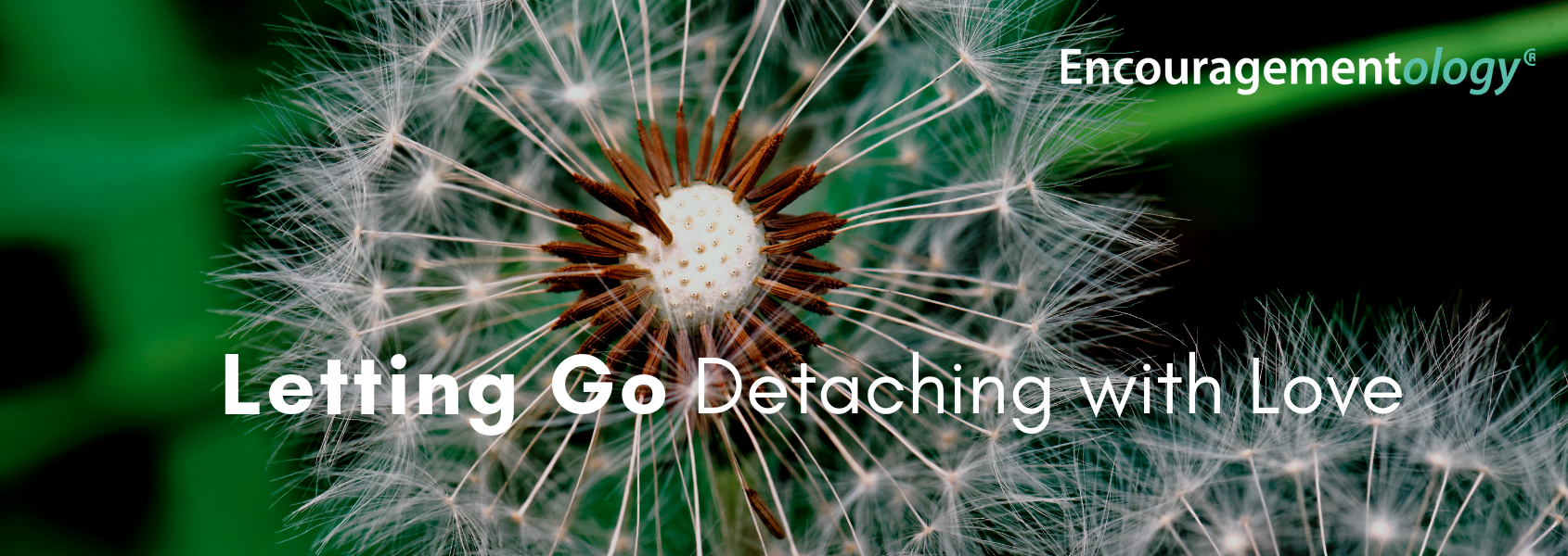 Letting Go Detaching with Love