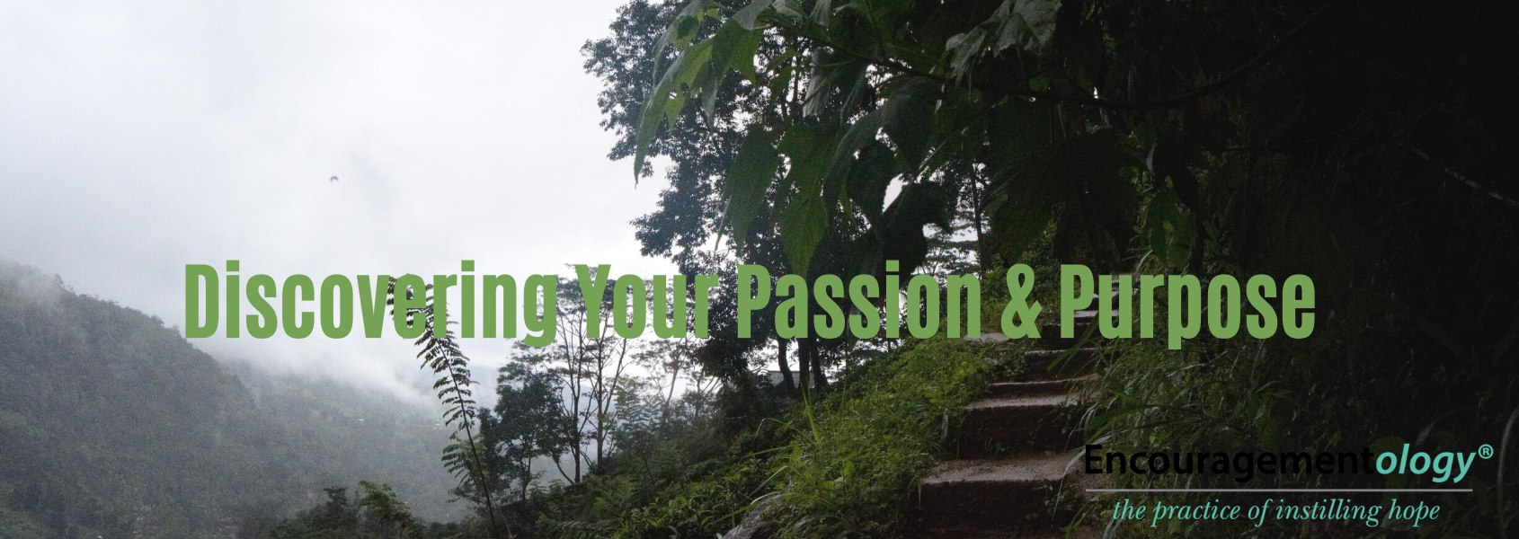 Discovering your passion and purpose
