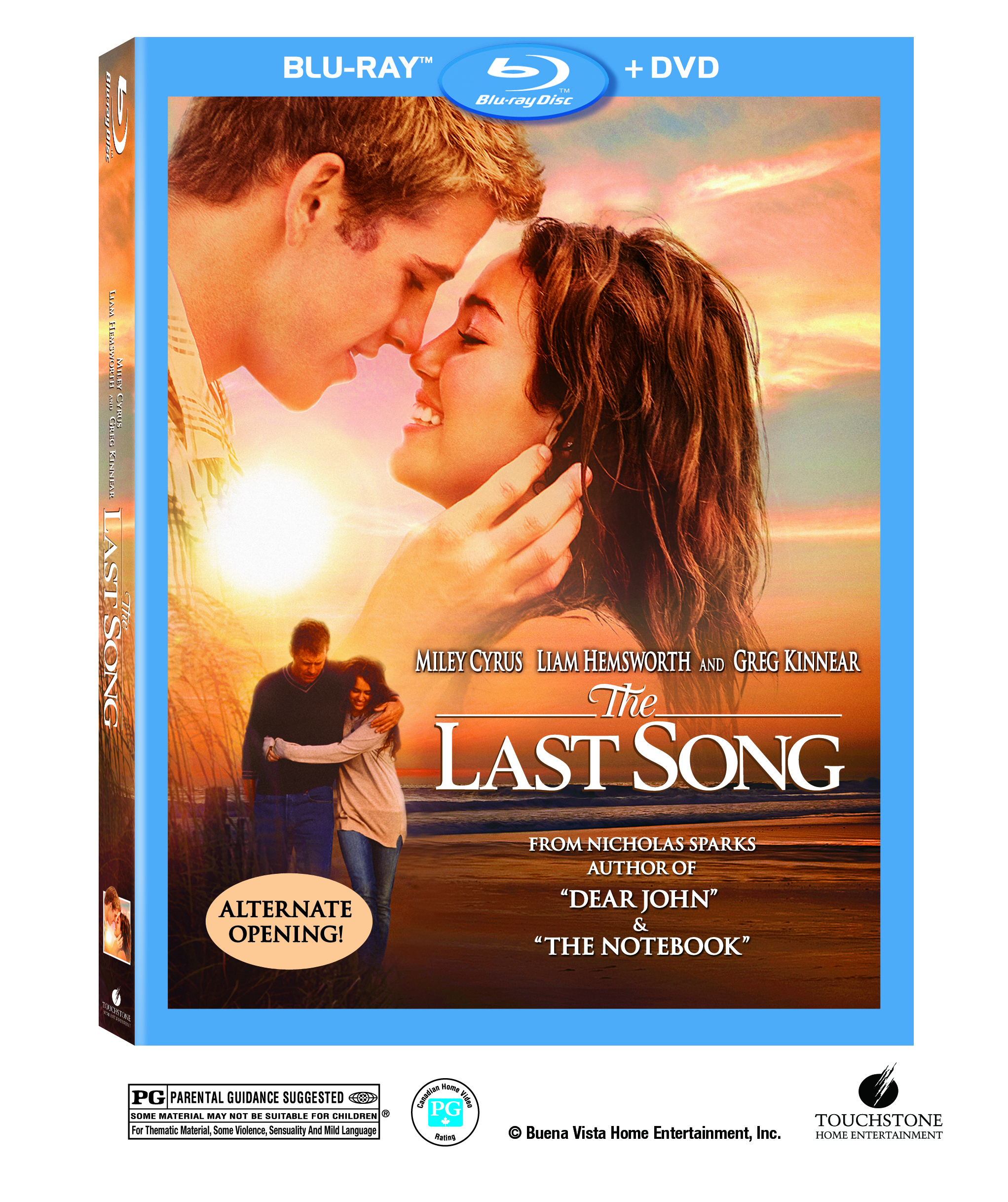 The Last Song image