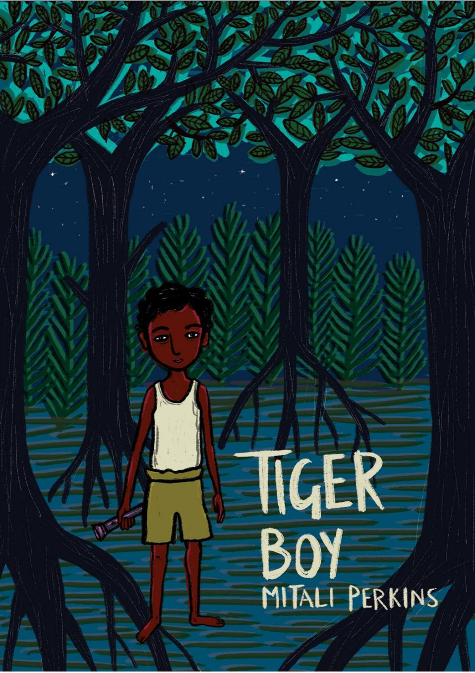 Tiger Boy cover image