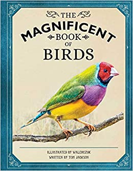 The Magnificent Book of Birds cover image