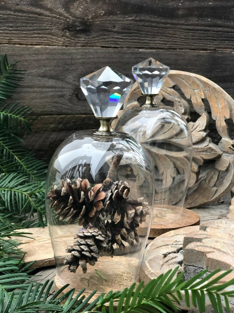 Learn how to make super easy holiday mini cloche