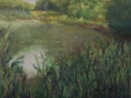 Pond View 1