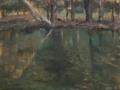 Lake in Mead Park II