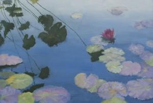 Bronx Water Lilies