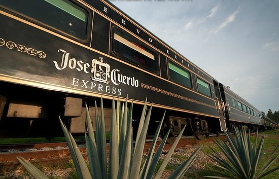 Train to Tequila Jose Cuervo Express tickets From Guadalajara to Jose Cuervo with open bar all you can drink