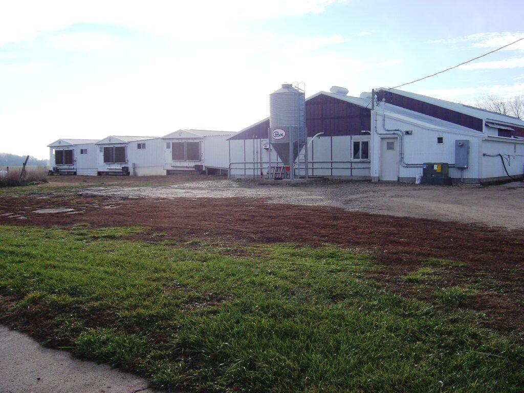 exterior of boar stud barns