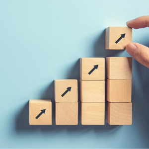 Investment Portfolio Management Services