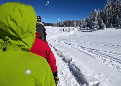 Snowskippers