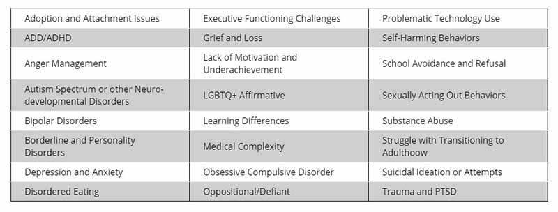 Therapeutic Spreadsheet
