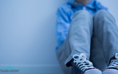 Attachment disorder one of many challenges affecting the behavior of children