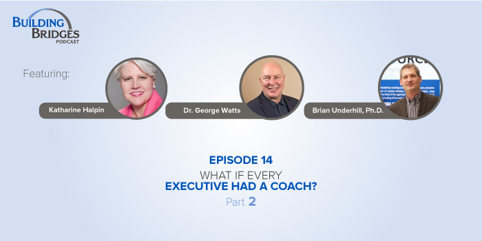 Ep 14 – What if Every Executive Had a Coach? Pt 2