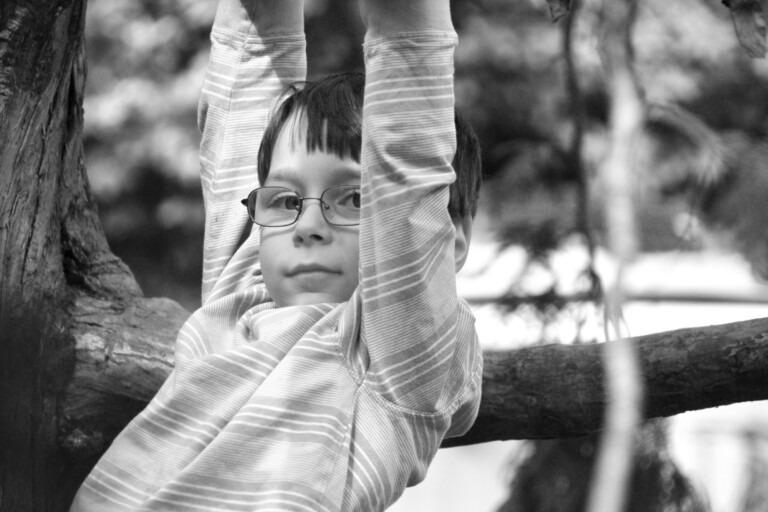 kid playing on tree