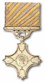 150px-Vayusena_Medal