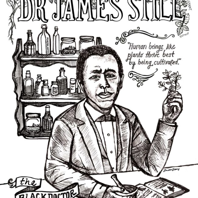 James Still Black Doctor of the Pines Illustration