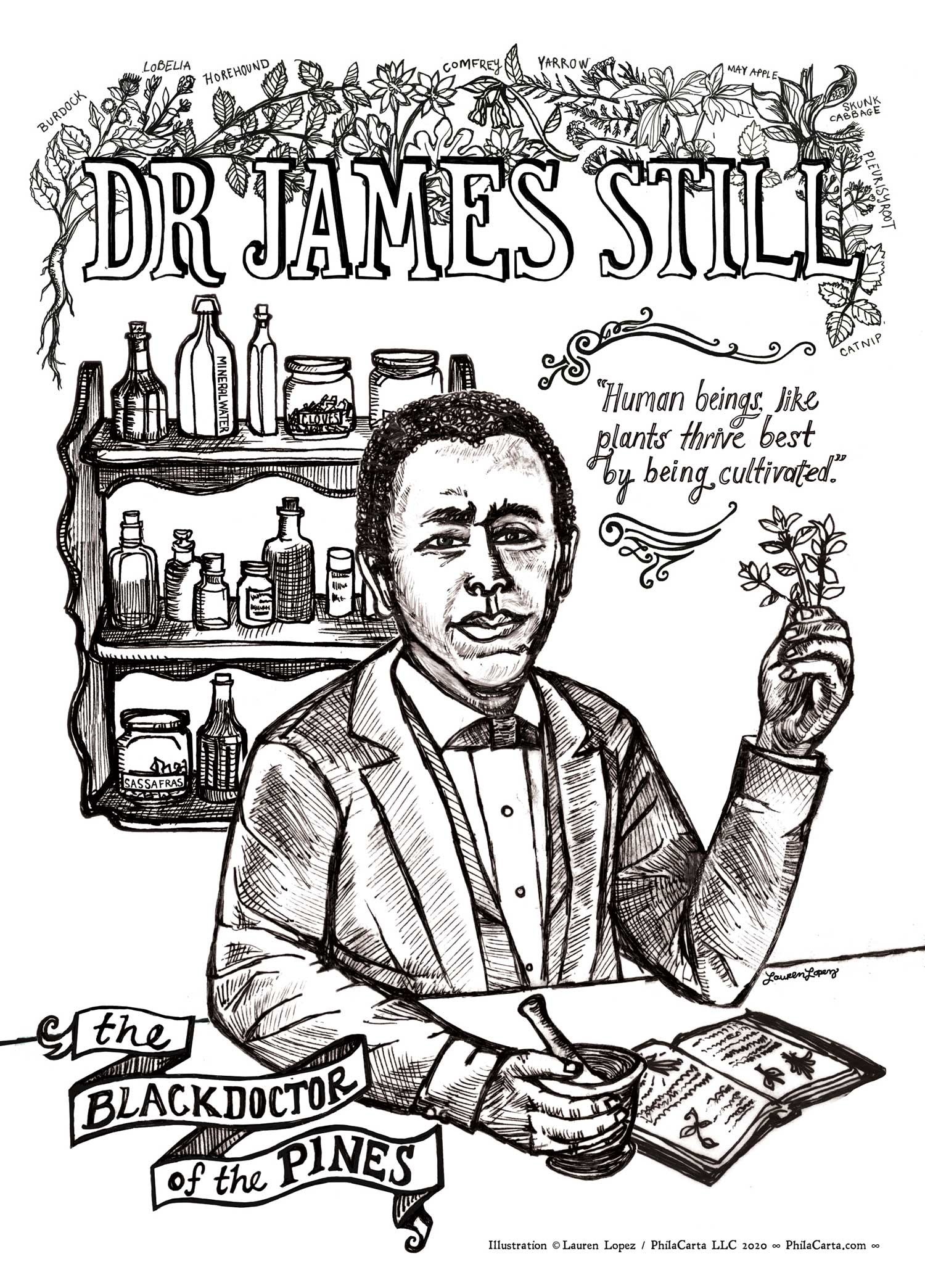 Dr James Still – the Black Doctor of the Pines
