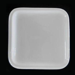 Dinner Plate Square 10""